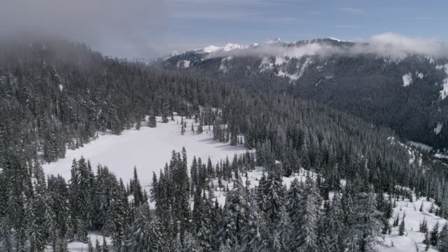 Bright Sunny Day Aerial of Snow Covered Mountain Lake in Forest with Thick Trees video