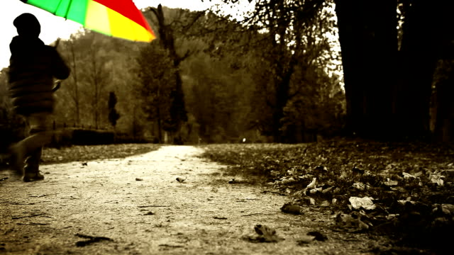 Bright warm-toned footage: merry little boy jumps with an umbrella in autumn park video