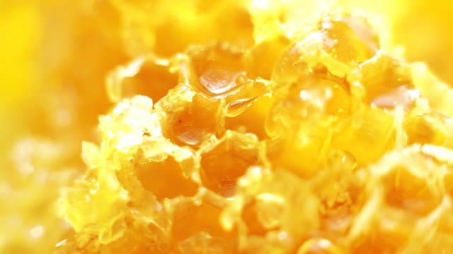 A bright yellow footage of honey being spilled onto the honeycomb video