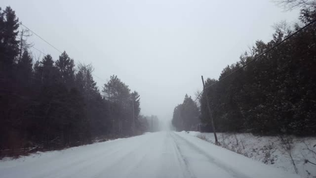 * hellere version * fahren ländlichen immergrünen waldstraße während winter schneesturm in tag.  driver point of view pov snowing blizzard schneefall auf der landstraße neben bäumen. - rustikal stock-videos und b-roll-filmmaterial