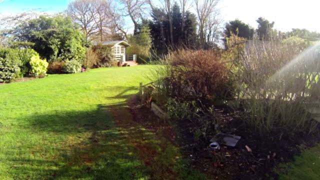 British Garden In The Spring video