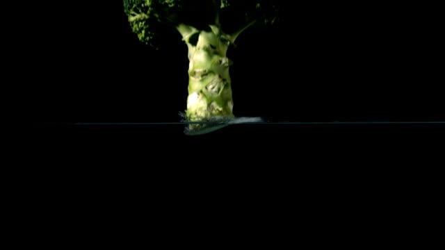 broccoli cadere in acqua su sfondo nero - crucifere brassicali video stock e b–roll