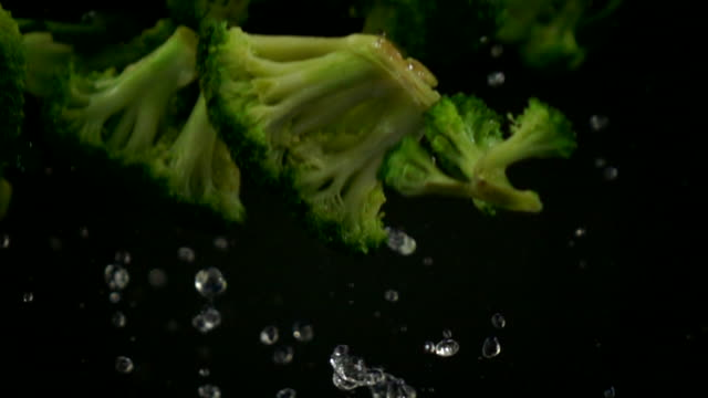 broccoli falling slow motion on black background - broccolo video stock e b–roll