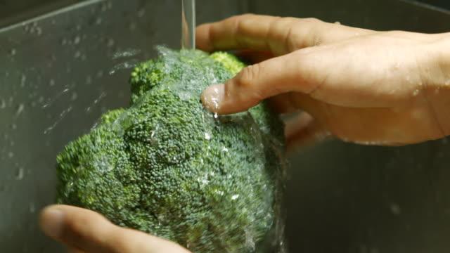 vídeos de stock e filmes b-roll de broccoli under water flow. - brócolo