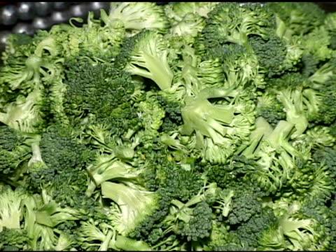 broccolo - crucifere brassicali video stock e b–roll