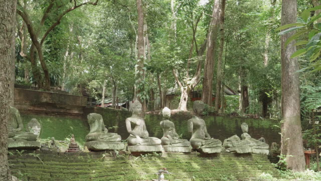 Broken buddha statue with lichen in Wat U-mong Chiangmai,Thailand