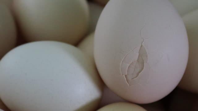 un uovo rotto - fragilità video stock e b–roll