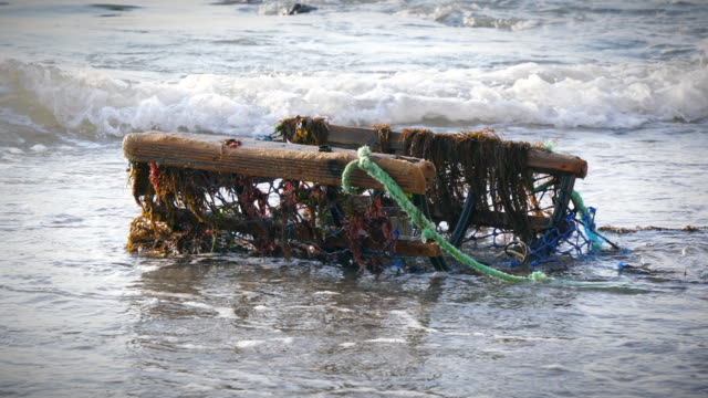 broken lobster trap - crostaceo video stock e b–roll