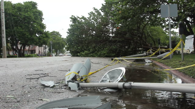 Broken street light post, downed trees aftermath of storm video