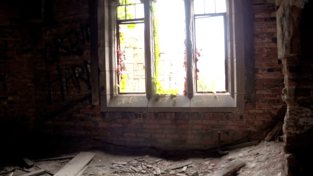 POV: Broken window in abandoned building overlooking wall covered with ivy