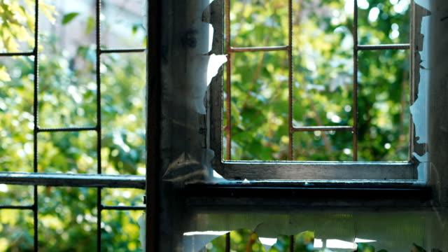 vídeos de stock e filmes b-roll de broken window in an abandoned house. concept: devastation, depression - obras em casa janelas
