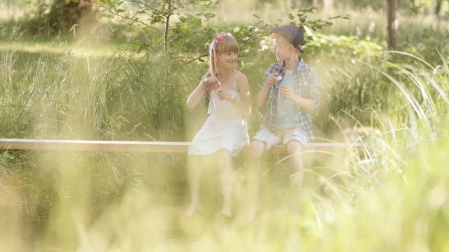 SLO MO 姉妹と兄弟自然の中に座っての泡 ビデオ