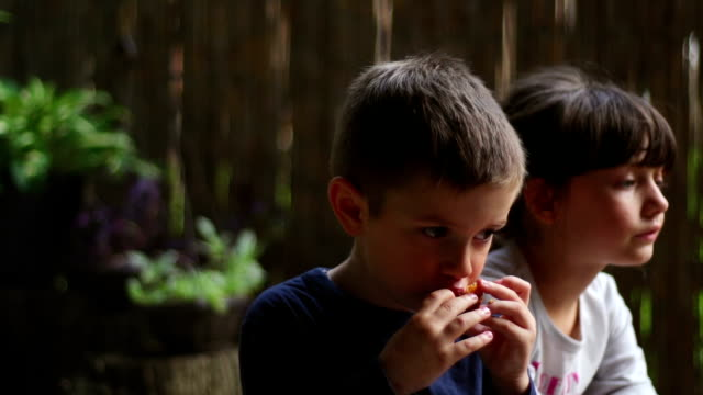 Brother and sister enjoying barbecue 1 video