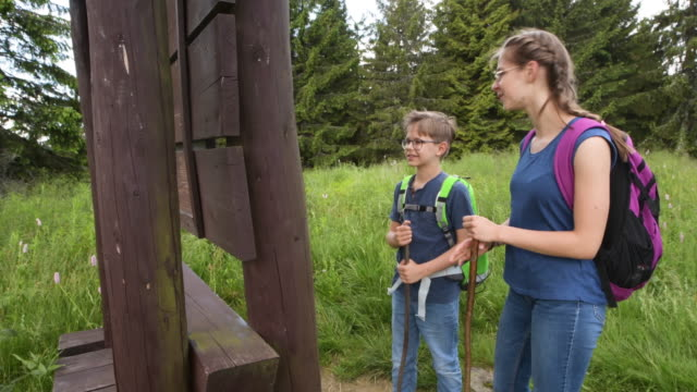 escursioni tra fratelli e sorelle in montagna - preadolescente video stock e b–roll