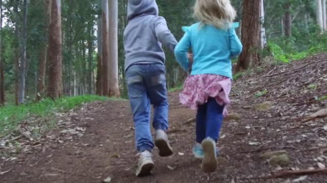 兄と妹の緑豊かな緑の森を実行します。 - 兄弟姉妹点の映像素材/bロール