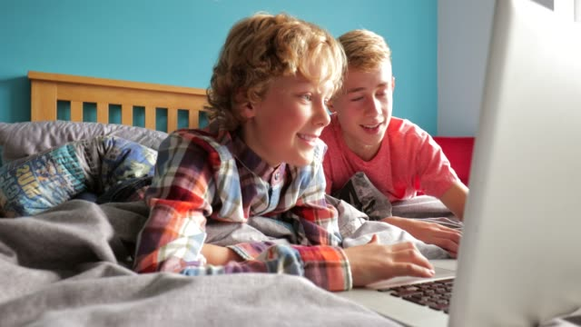 Brothers Using Laptop video