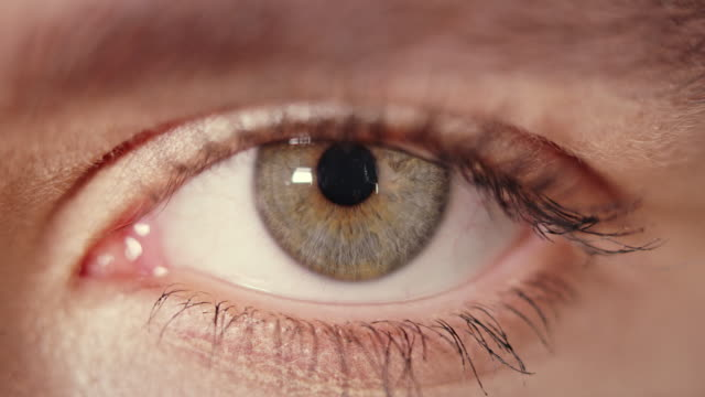 brown and blue colored iris of a human eye - веко стоковые видео и кадры b-roll