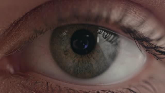 vídeos de stock e filmes b-roll de brown and blue colored iris of a human eye - castanho