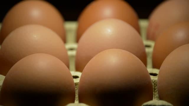 vídeos de stock, filmes e b-roll de ovos marrons girando em fundo preto - alimento cru