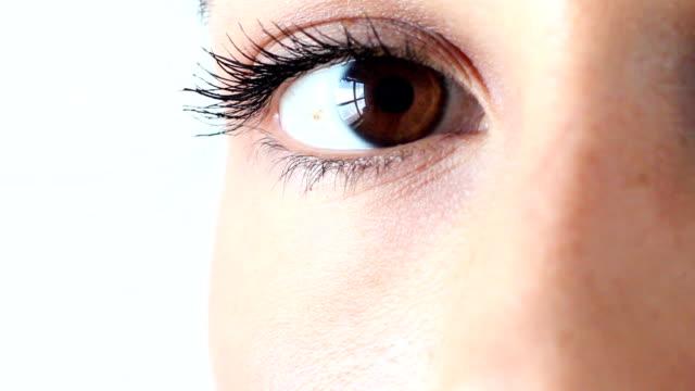 茶色の目 - まつげ点の映像素材/bロール