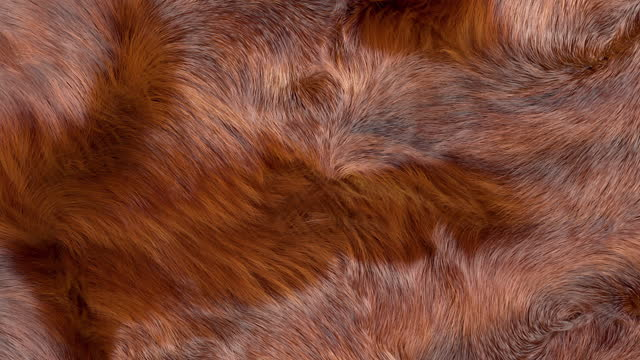 Brown Fur Background Brown fur background, 3D generated, closeup of waving soft brown fur texture. fur stock videos & royalty-free footage