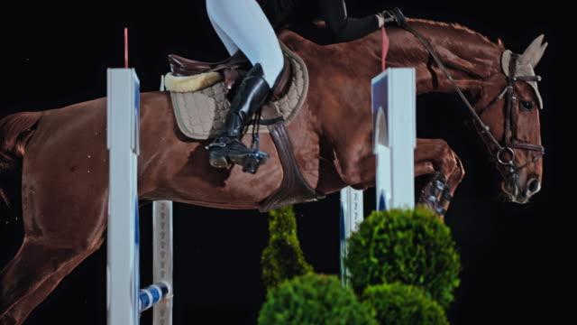 slo mo brun häst med en kvinnlig ryttare hoppa oxer - hästhoppning bildbanksvideor och videomaterial från bakom kulisserna