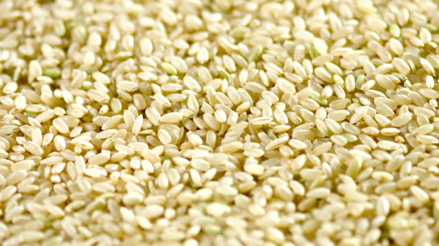 Brown Rice  close up video