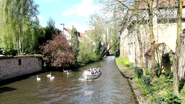 bruges, belgio - canale video stock e b–roll