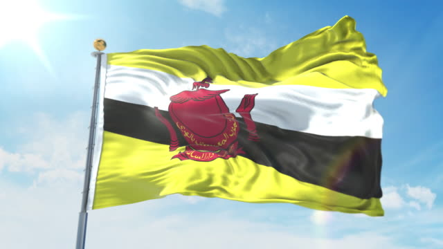 Brunei flag waving in the wind against deep blue sky. National theme, international concept. 3D Render Seamless Loop 4K Brunei flag waving in the wind against deep blue sky. National theme, international concept. 3D Render Seamless Loop 4K allegory painting stock videos & royalty-free footage