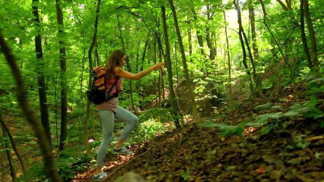 brunette girl hiking uphill in sunny forest. fullhd steadicam shot - brązowe włosy filmów i materiałów b-roll