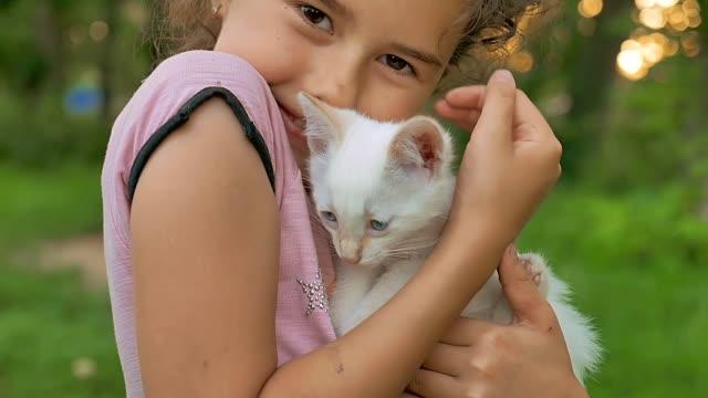 brunette girl holding kitten in her cat arms love teen outdoors video