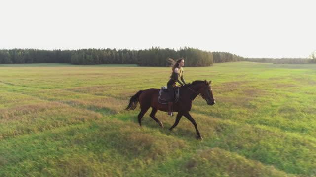 Brunette girl rides a horse - gollop. video