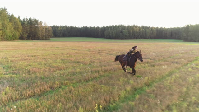 Brunette girl with long hair fluttering in the wind rides a horse - rides. video