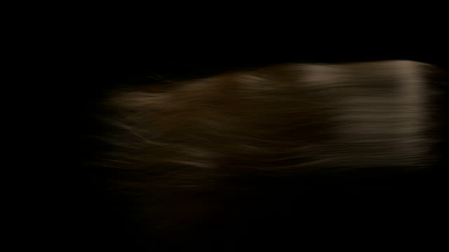 stockvideo's en b-roll-footage met donkerbruine haren waait en wiegende vóór de afwikkeling op een donkere achtergrond - curly brown hair