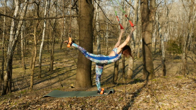 Brunette hangs on the ropes in practicing aerogravity Young woman practicing aerogravity in the park. The woman makes physical exercises on the ropes on tree. Flexible female hanging on the ropes and stretching her body and muscles. She's moving slowly and accuracy. arthropod stock videos & royalty-free footage