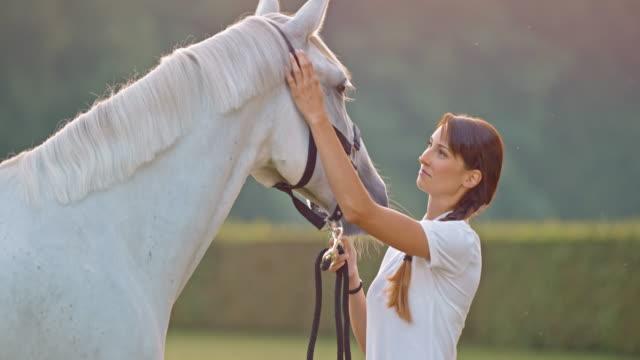 SLO Missouri Brunette femme des caresses white horse sur une prairie - Vidéo
