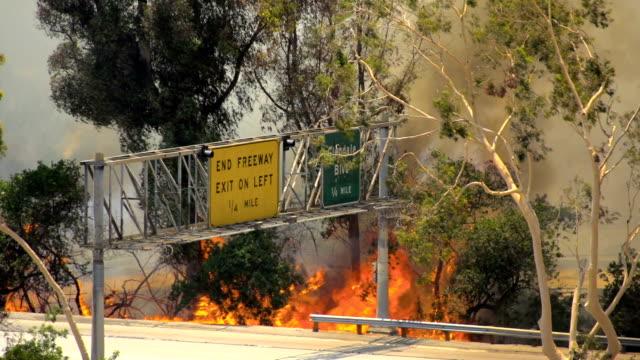 brush fire los angeles - skog brand bildbanksvideor och videomaterial från bakom kulisserna