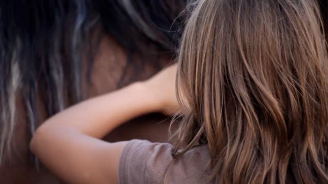 Brushing Horse Closeup video