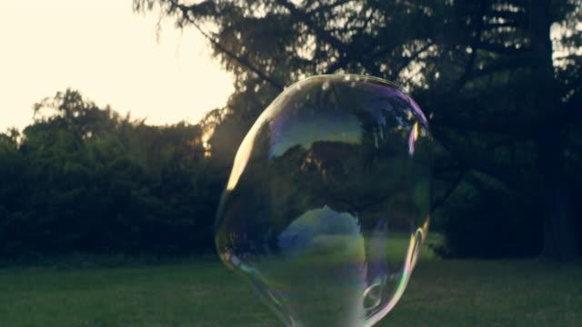 bolle nel parco. divertimento estivo - largo descrizione generale video stock e b–roll