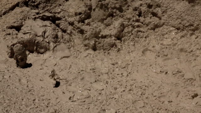 Bubbling Mud Pot in Yellowstone - With Sound video