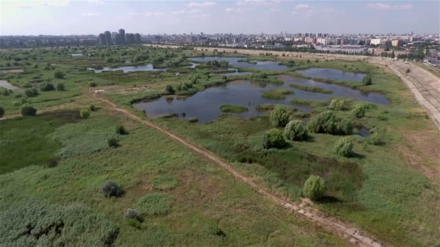 Bucharest Wild Wetland Aerial video