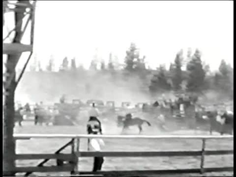 sgroppando cavallo e rider - cowboy video stock e b–roll