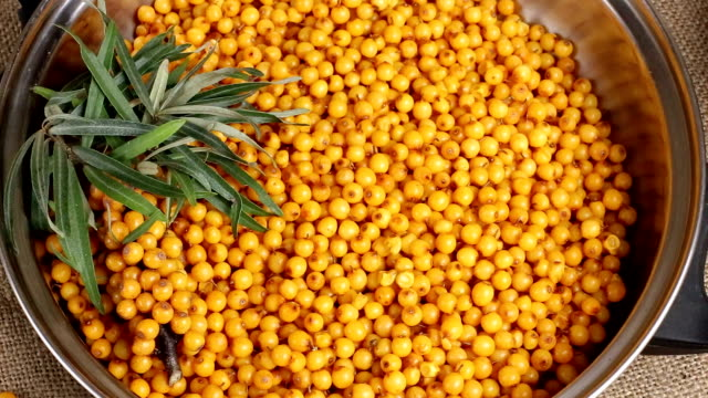 Buckthorn, Sea buckthorn berries in a bowl video