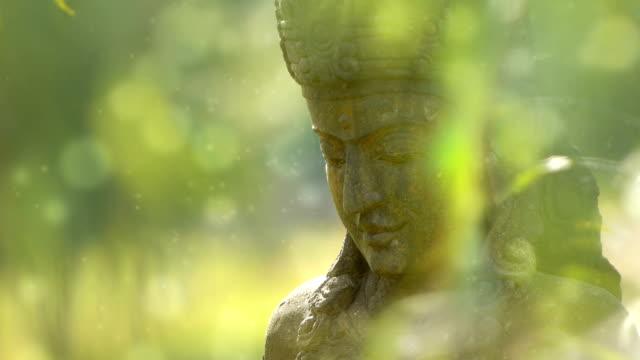Buddhism Goddess video