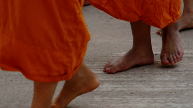 Buddhist monk walking in the row in morning video