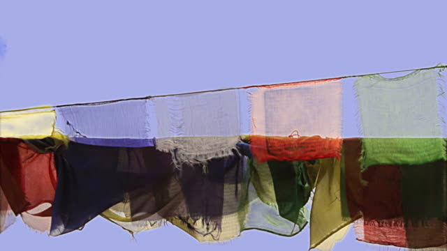 Buddhist prayer flags wave in the wind video