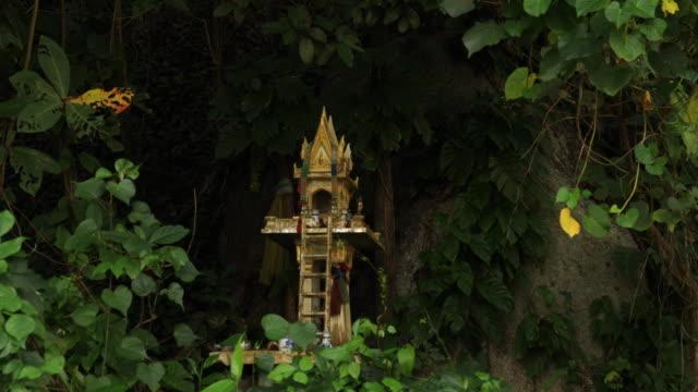 vidéos et rushes de sanctuaire bouddhiste en forêt - évasion du réel