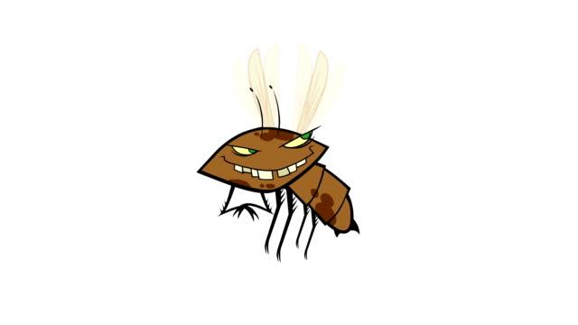 bug flying cartoon with alpha video