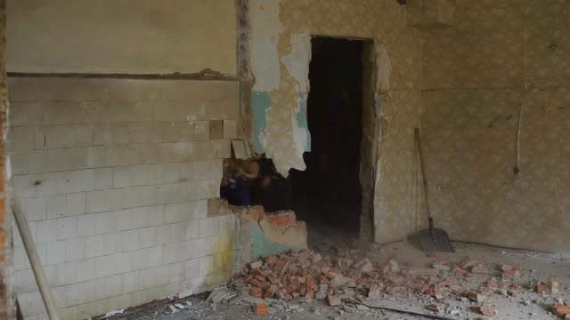 builder is breaking a wall in old flat, striking with a sledgehammer in a construction site, bricks are scattering video