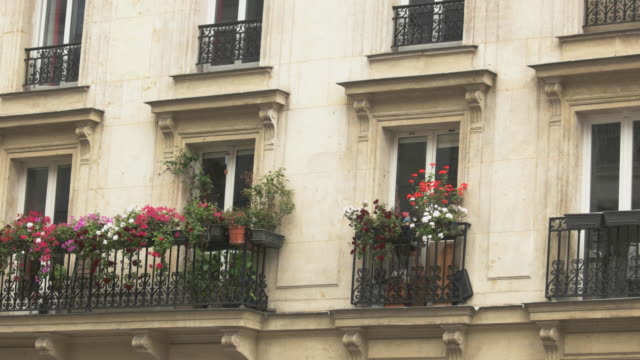 Building of beige color. Building of beige color. Balconies with flowers. Take a rest at hotel. Best prices for single rooms. french architecture stock videos & royalty-free footage